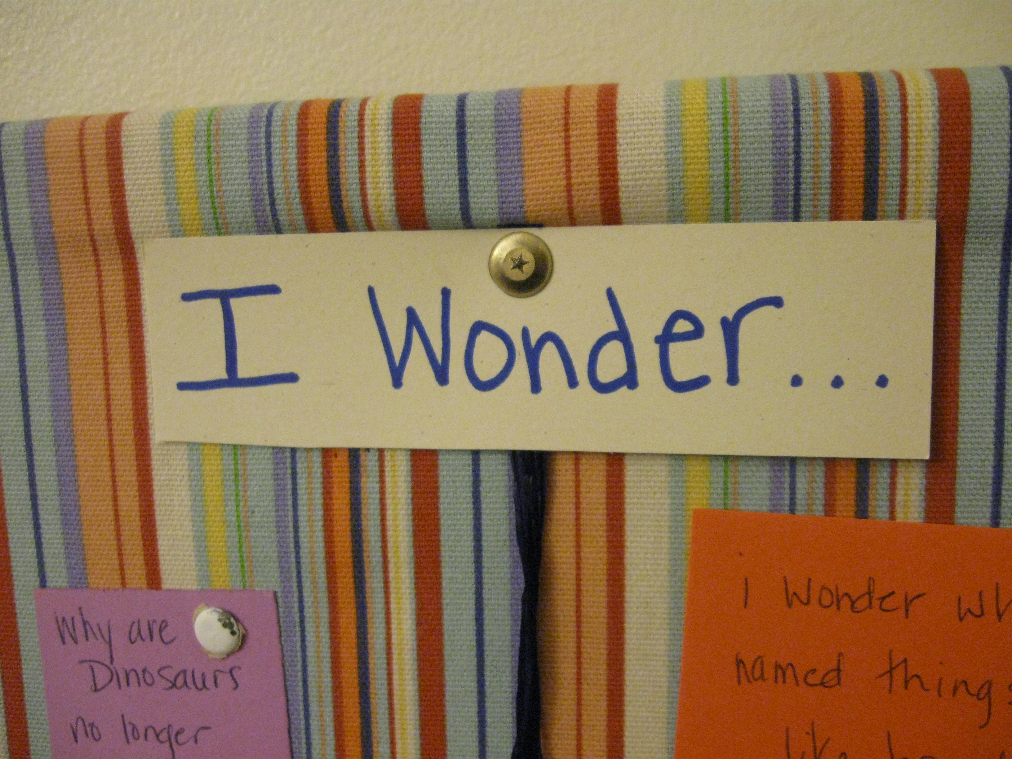 Instill a Sense of Wonder, Curiosity